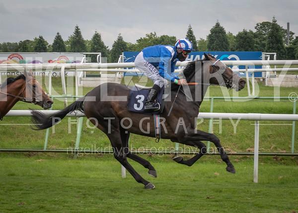 Race 8 - Al Zaraqaan