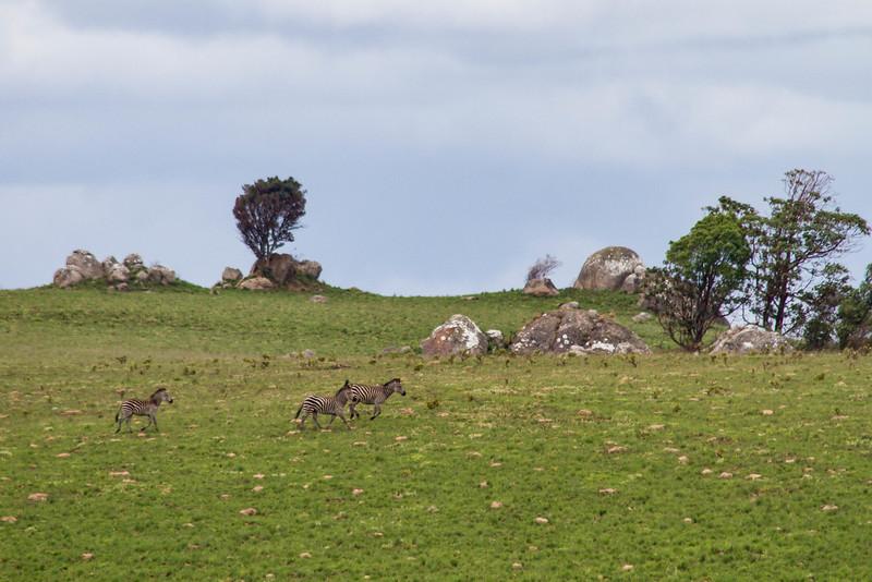 Malawi-137.jpg