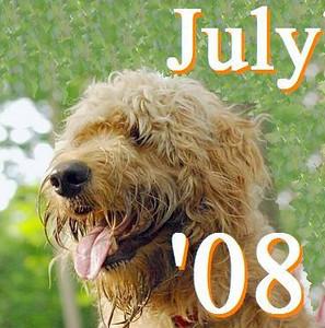 01 JULY 2008