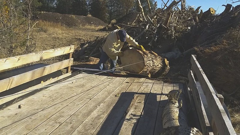 October 2018  -Loading a big blue stained pine.