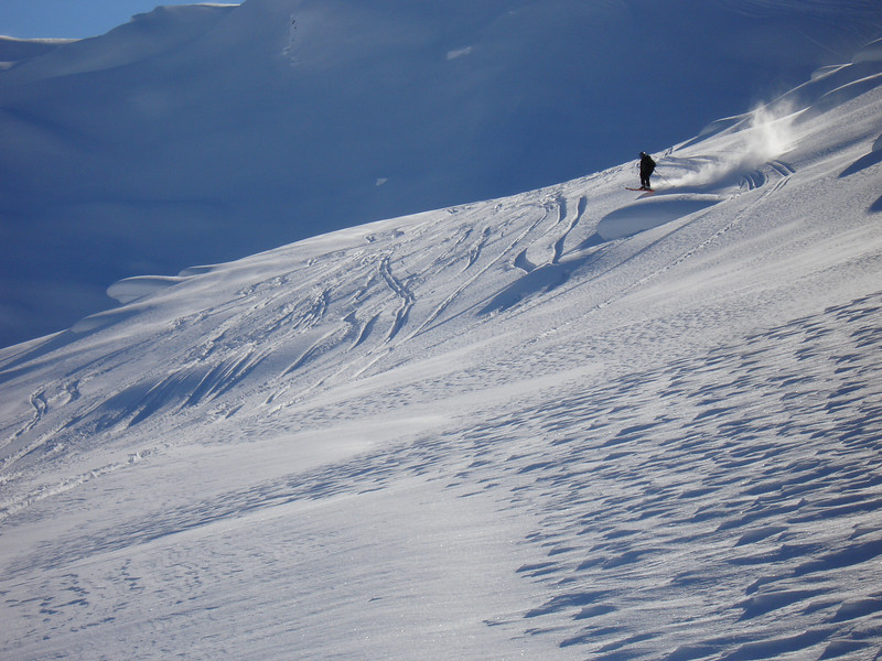 Alaska 2008 346.jpg