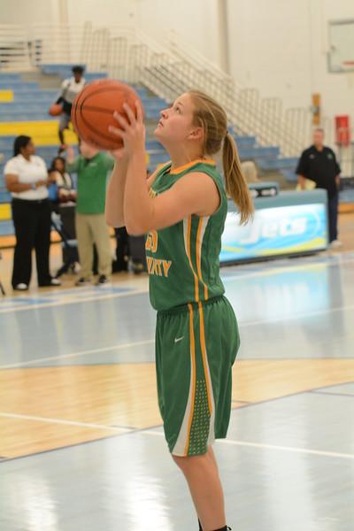 rhea county basketball 11 19 17