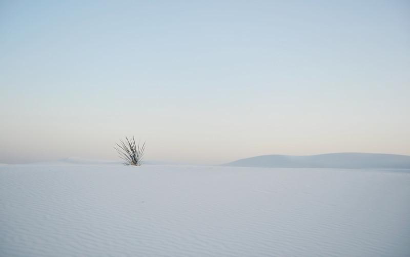 white sands2.jpg
