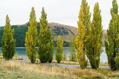 Lake Tekapo and cycle to Twizel