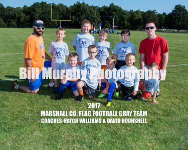 2017  Gray Team Marshall Co. Flag Football