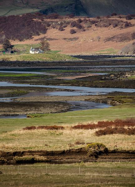 Scotland_Apr_2015__X1A7050.jpg