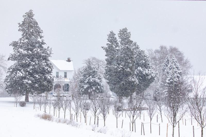 Snow13jan19-1380.jpg