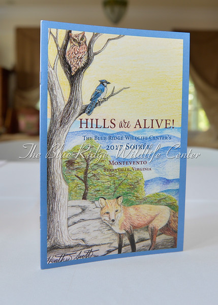 Blue Ridge Wildlife Center's 2017 Soiree