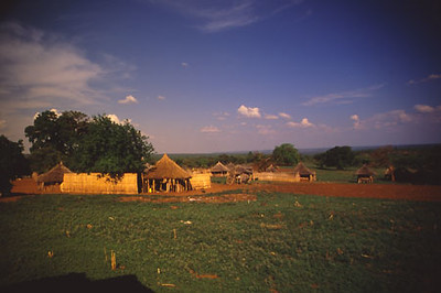 africa0044.jpg
