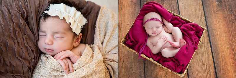Newborns 20152b.jpg