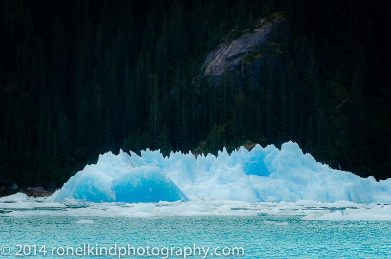 Glaciers-0196.jpg