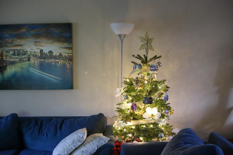 2019-12-22_ChristmasDecor-4463.jpg