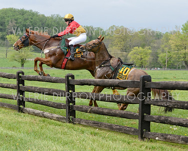 MARYLAND HUNT CUP / Fence 4 Incident