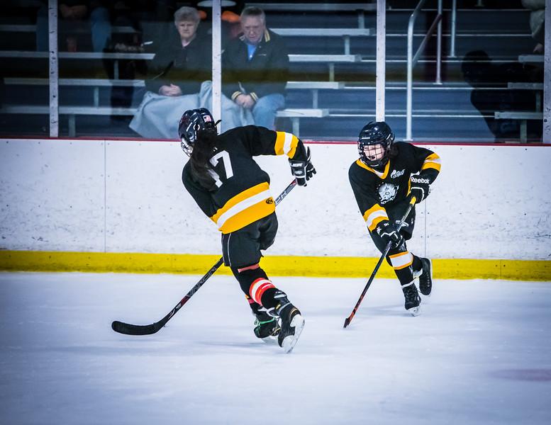 Bruins2-500.jpg