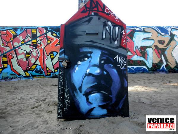 2010 February  Public Art Walls