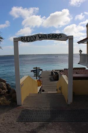 Bonaire 2015 REEF trip topside photos