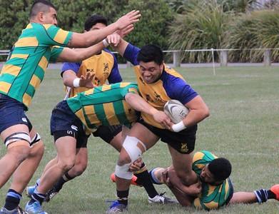 22 August Festival Series Wgtn Samoans (26) v Wgtn Suburbs (24)