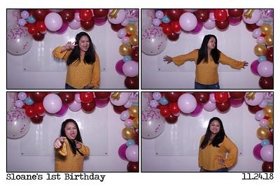 Sloane's 1st Birthday