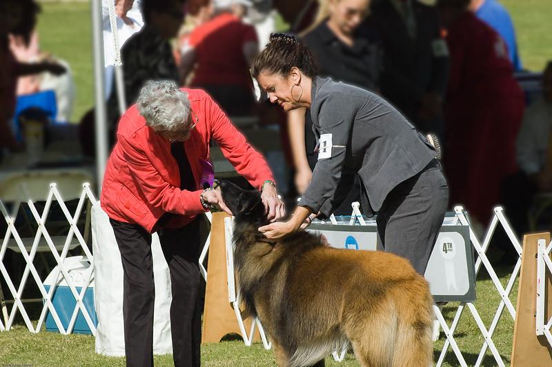 Boca Raton Dog Show-8.jpg