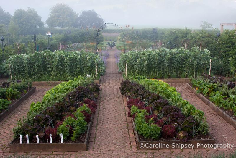 The Organic Gardens, Holt Farm-2699.jpg