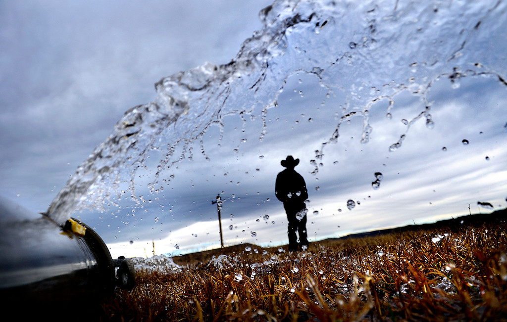 . Eldon Ackerman, of the Ackerman Farms, talks while standing in a barely field being irrigated on Wednesday, November 28, 2012. Farms could be affected by a shortage of water created by this summer\'s wildfires. AAron Ontiveroz, The Denver Post