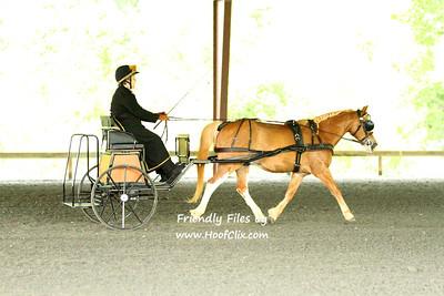 2011-05-29 Carolina Carriage Club HDT