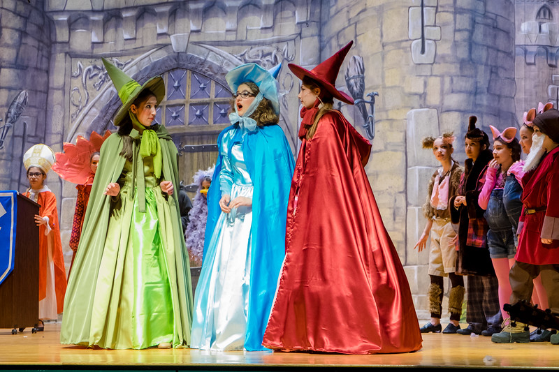 2015-03 Shrek Play 3353.jpg