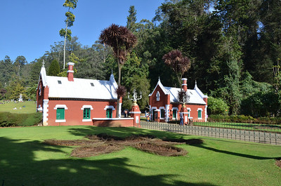 Government Botanical Gardens - Ooty