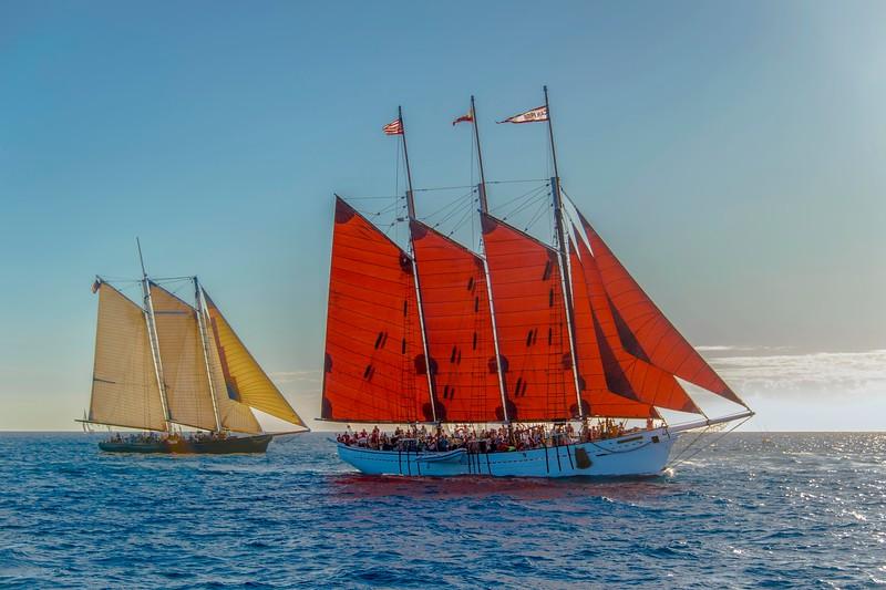 Tall Ships-29.jpg