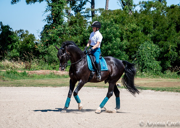 Ridley at the Jessica Clinic June 2018 by Aryonia