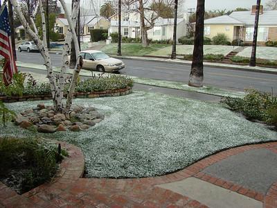 WEIRD WINTER: Snow fell in Burbank (Southern California)