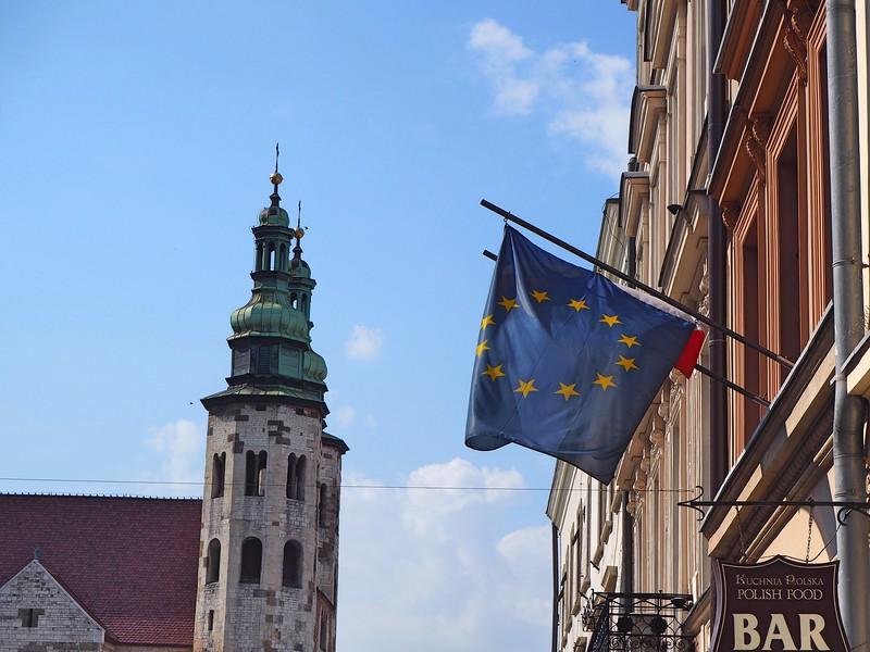P7250062-eu-flag.jpg