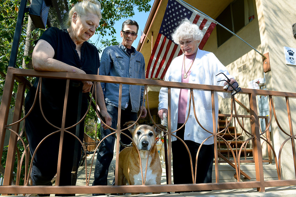. From left, Mary Ricketts, with her dog Sadie, apartment manager Jerry Schiess, and apartment owner Judy Guth, at Guth\'s North Hollywood apartment that requires tenants to have pets, Wednesday, February 19, 2014. (Photo by Michael Owen Baker/L.A. Daily News)