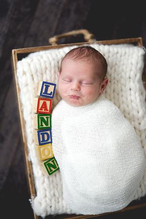 Newborn Landon