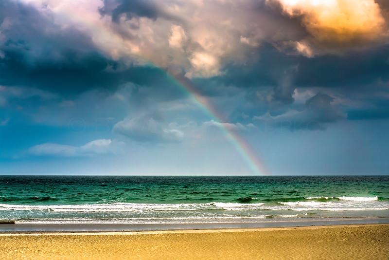 WB_Rainbow_Horz-5860-5.jpg