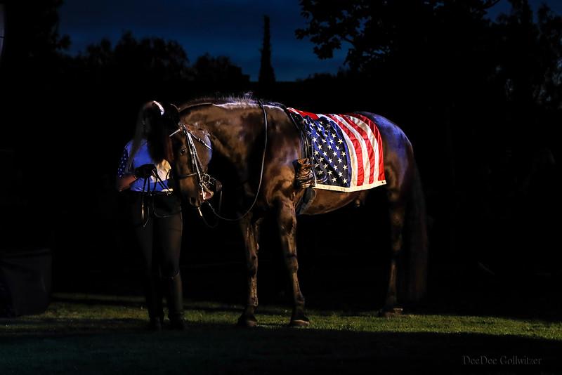 The Horse EO9I3188.jpg