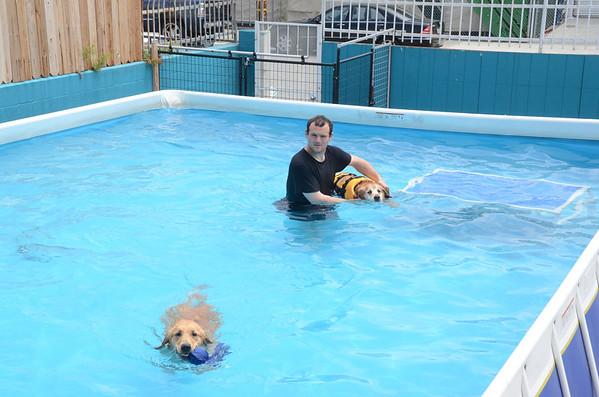 Pool - 1 June 2012