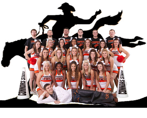 2013-14 Cheer Media