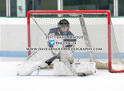 2/15/2017 - Girls Varsity Hockey - Needham vs Wellesley