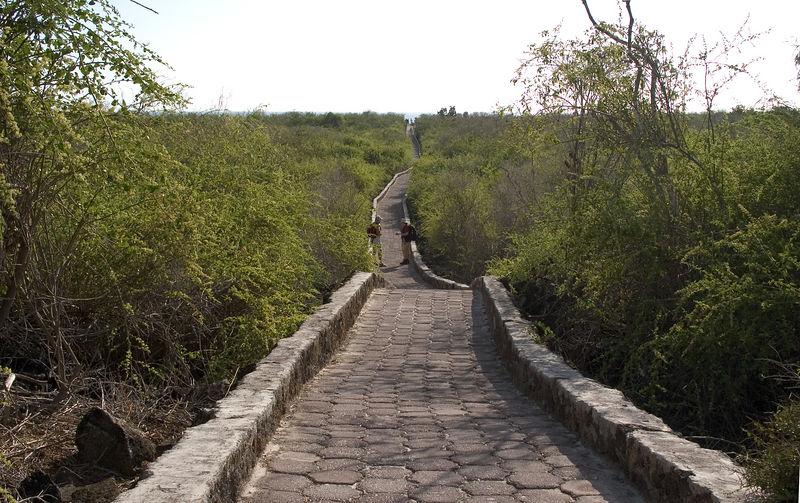 Path to Tortuga Bay beach   (Dec 09, 2005, 03:58pm)
