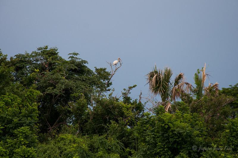 Mexico-Chiapas-9514.jpg