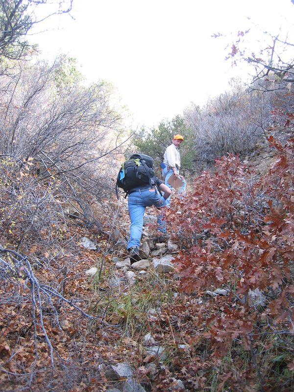 600-ft bushwhack up to ridge top.