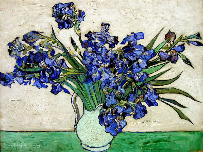 """Vincent van Gogh - Irises In A Vase 1890 also named Iris dans un vase - Painted during his Saint-Remy stay at the sanitarium. Photgraphed in New York, at the Metropolitan Museum of Art  Some biographical information:  Van Gogh, hounded by the villagers in Arles for his illness, decided to move to nearby Saint-Rémy and check himself into the asylum as a voluntary patient. Vincent van Gogh spent one year, the most difficult of his life, at the asylum in Saint-Rémy de Provence. It would also prove to be one of his most creative as an artist. Irises was one of his works during his stay. Thanks once more to brother Theo's continued support, the asylum wasn't so bad. Vincent had a bedroom and a room for a studio. The only treatment was """"hydrotherapy"""" which consisted of two-hour long baths twice a week. When Vincent wasn't suffering from his illness, he was clear-headed and able to work on his art --- JohnBrody.com"""