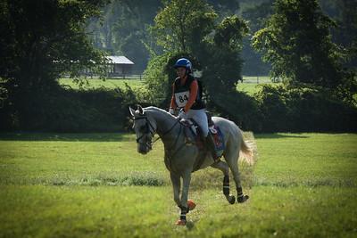 Connecticut Horse Show