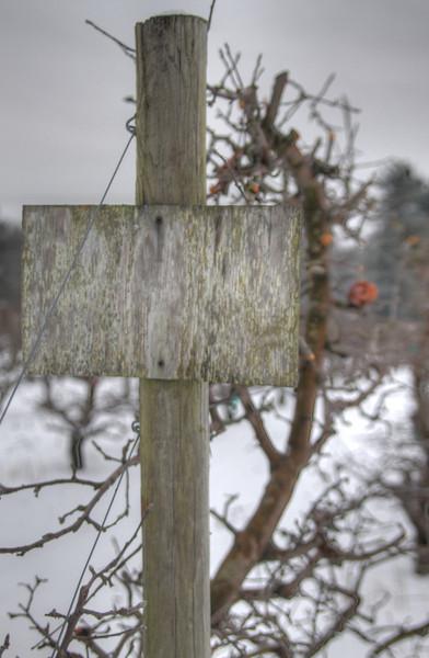 Easy Pickins Winter 015-1676784037-O.jpg