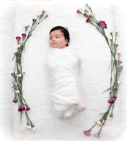 Sienna ~ Newborn