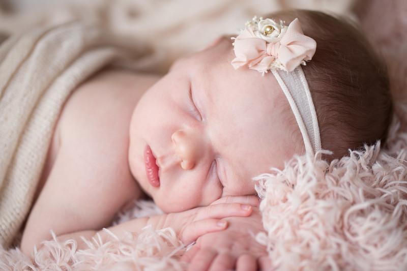 Ardea Newborn 12.jpg