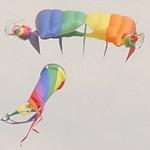 Frankenmuth Kite Fly 2001