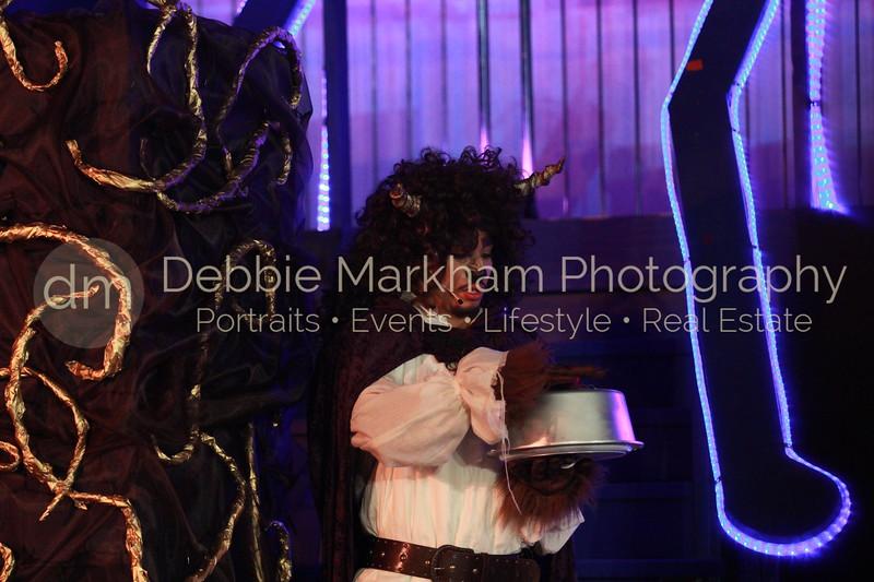 DebbieMarkhamPhoto-Opening Night Beauty and the Beast101_.JPG