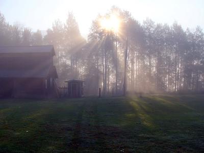 7-2-14 Birch Meadows Early Morning Fog